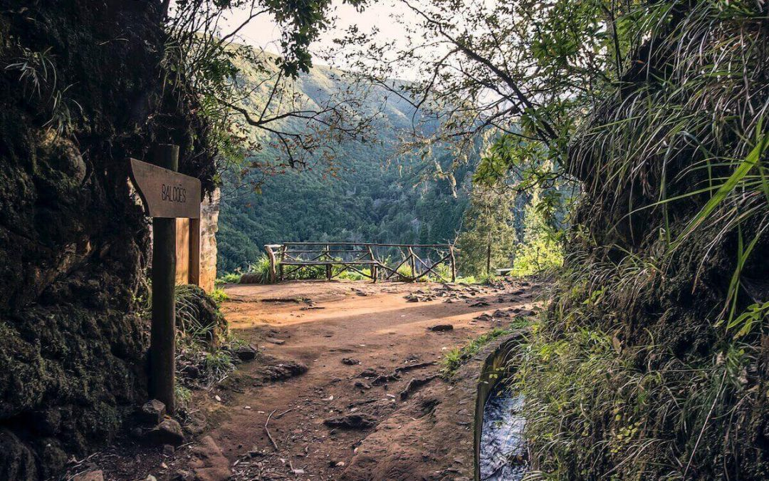 5 reasons why you should try a Madeira Levada Walk